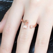 silver ring MLK74a