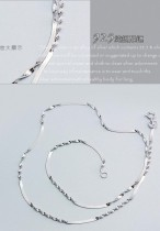 18  silver chian
