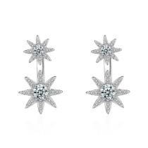 earring XZE269