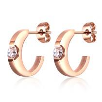 earrings 0618481
