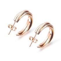 earrings 0619530