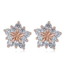 earring 25681