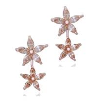 earring q6660813