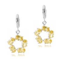 earring q5110110