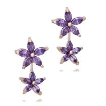 earring q6660814
