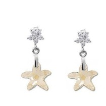 - Starfish  earrings980504