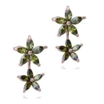 earring q6660811