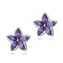 earring q6665931