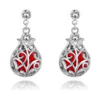 Lucky bottle earrings 27896