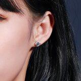 925 Sterling Silver Zircon Earring Women's Fashion European and American New Diamond Set Ear Stud Jewelry Mle2106