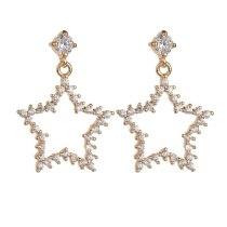 Cutout Star Stud Earring Korean Style Fashion Earring S925 Sterling Silver Pin Zircon Stud Earrings Gold Plated Earrings Qxwe969