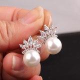 Korean-Style Simple Stud Earrings AAA Zircon Shell Pearls Stud Earrings Pearl Earrings Wholesale Qxwe869