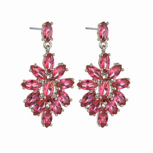 Ice Flowers Zircon Earrings AAA Zircon Stud Earrings Korean Earrings Dinner Wedding Jewelry Qxwe571