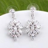 Ice Flowers Zircon Earrings AAA Zircon Stud Earrings Korean Earrings Dinner Wedding Jewelry Qxwe571