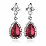 Drop AAA Zircon Earrings Ear Pendant 925 Sterling Silver Ear Pin Korean Fashion Jewelry Earrings Qxwe659