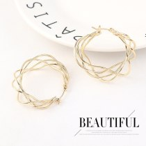 New Exaggerated Cool Metal Earrings Women's All-match Simple Fashion Earrings  Jewelry 140503