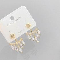 Sterling Silver Needle Rhinestone Zircon Tassel Earrings Internet Influencer Stud Earrings Fashion Earrings
