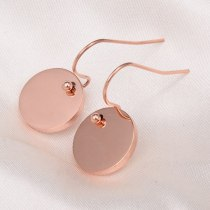 E26 Generous Style Mid-Wafer Sequins Ear Hook Earrings 18K Titanium Steel Rose Gold European and American Style