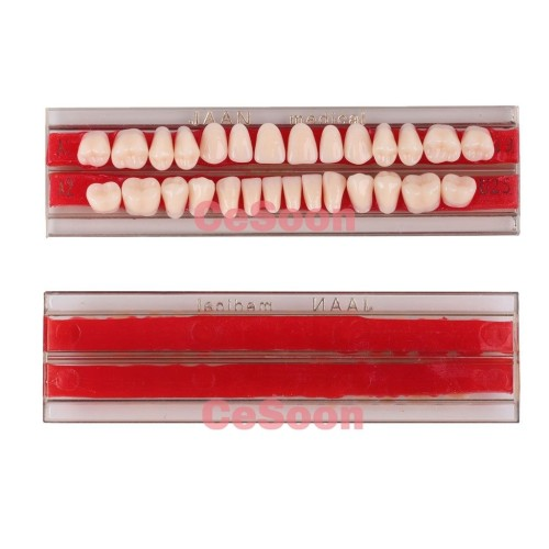 28Pcs/Pack Dental Acrylic Resin Teeth A2 Full Set Teeth Upper Lower Shade Tooth Dentures Material Teeth