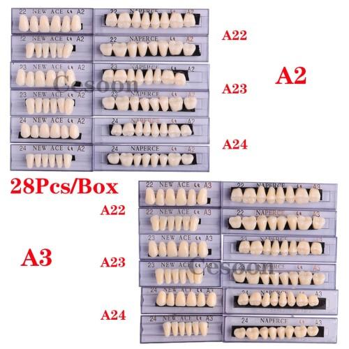 28Pcs/Box Dental Denture Acrylic Resin False Teeth A2 A3 22#-24# Choosable Upper And Lower Shade