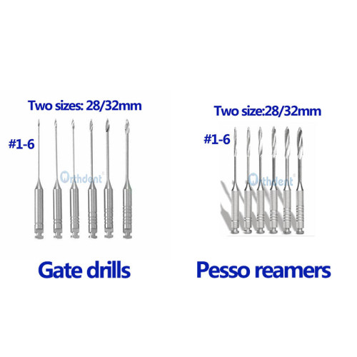 6Pcs/Box Dental Gates Drills/Endodontic Pesso Reamers 28/32 Mm Assorted Size #1-6 For Endodontic Root Canal