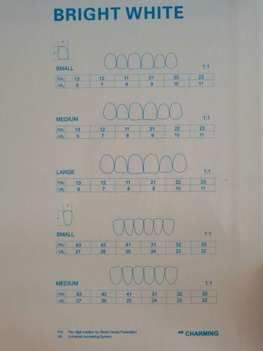 30Pcs/Set Dental Ultra Thin Whitening Porcelain Teeth Veneers Stable Teeth