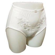 Ladies Embroidery High Waisted Briefs