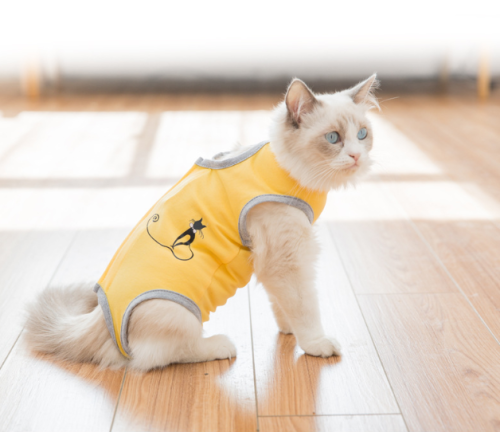 Cat Surgical Recovery Suit Abdominal Wounds or Skin Diseases, After Surgery Wear, Professional Home Indoor Pets Clothing