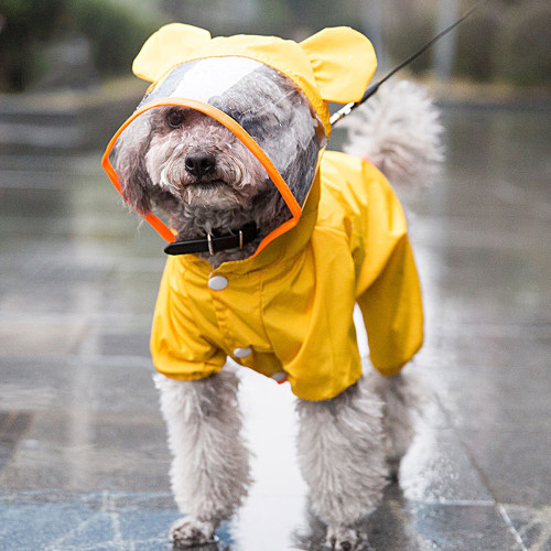 New dog raincoat all-inclusive cartoon waterproof teddy four-foot poncho small dog puppies autumn and winter pet clothes