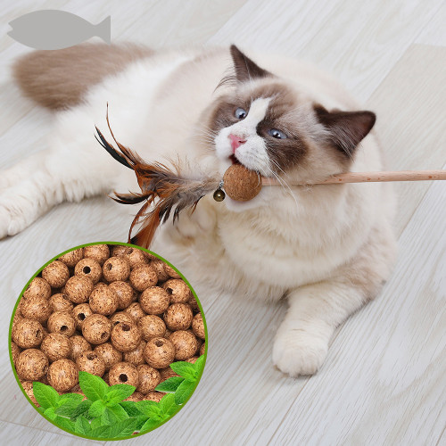 Funny cat sticks Original color environmental feather cat molars play stick cat mint cork ball bell cat toy