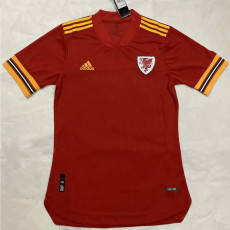 2020 Wales Home Player Soccer Jersey