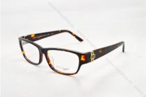 GG3573 Eyeglasses Optical  Frames FG810