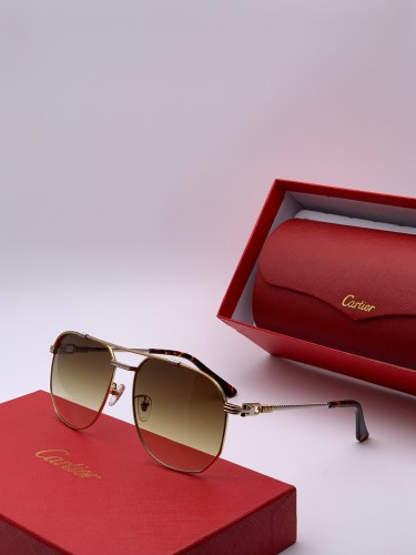 Wholesale Replica Cartier Sunglasses CT0109 Online CR128