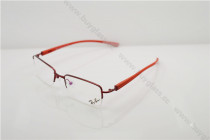 RB8755   eyeglass optical frame FB656