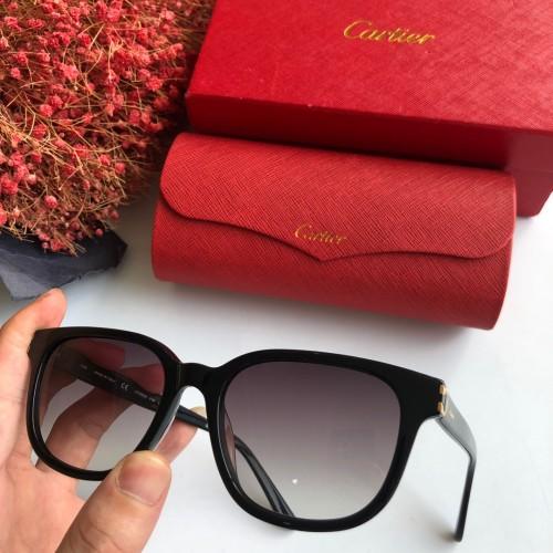 Wholesale Copy Cartier Sunglasses CT0004S Online CR119
