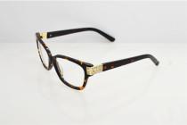 Swarovski eyeglasses SW5090 cheap eyeglasses  FSK016