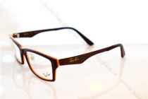8254  eyeglass optical frame FB630