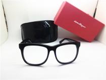 Ferragamo  Acetate Glasses Eyeglasses Optical Frames FER025