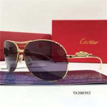 Oversized Square Cartier  Sunglasses T8200592 Optical imitation CR103