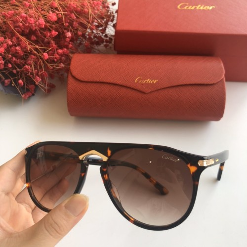 Wholesale Fake Cartier Sunglasses CT0013S Online CR135