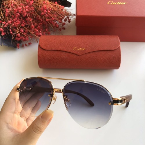 Wholesale Replica 2020 Spring New Arrivals for Cartier Sunglasses CT8200986 Online CR137