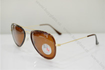 RB3513  sunglasses  SR122