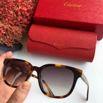 Wholesale Copy Cartier Sunglasses CT0004S Online CR119