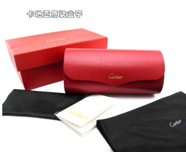 Designer sunglasses case