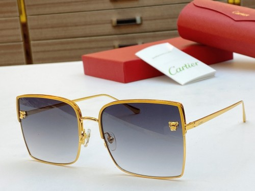 Replica Cartier Sunglasses CT0119S Online CR144