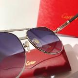 Cartier Sunglasses CT0158 Glass CR149