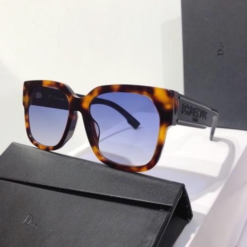 DIOR LDIF Sunglasses Online SC146
