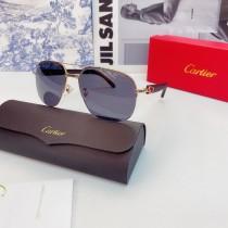 Replica Cartier Sunglasses Cartier glass CT0569 CR163