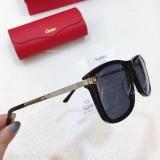 Replica Cartier Sunglasses CT0075S CR167