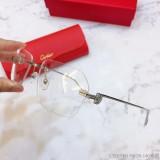 Replica Cartier Eyeglass Optical Frames CT01130 FCA320